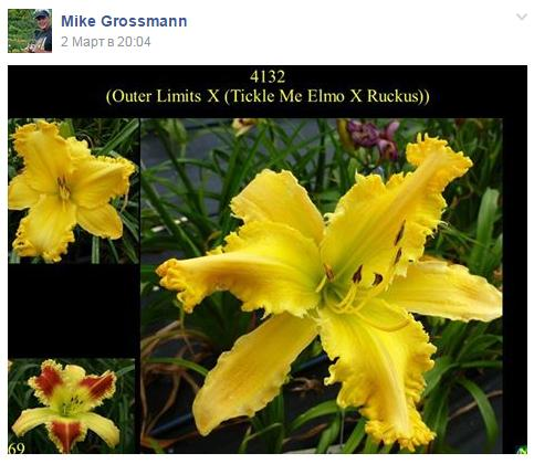Mike_Grosmam_facebook_00.jpg